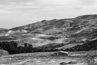 A-Landscapes-116