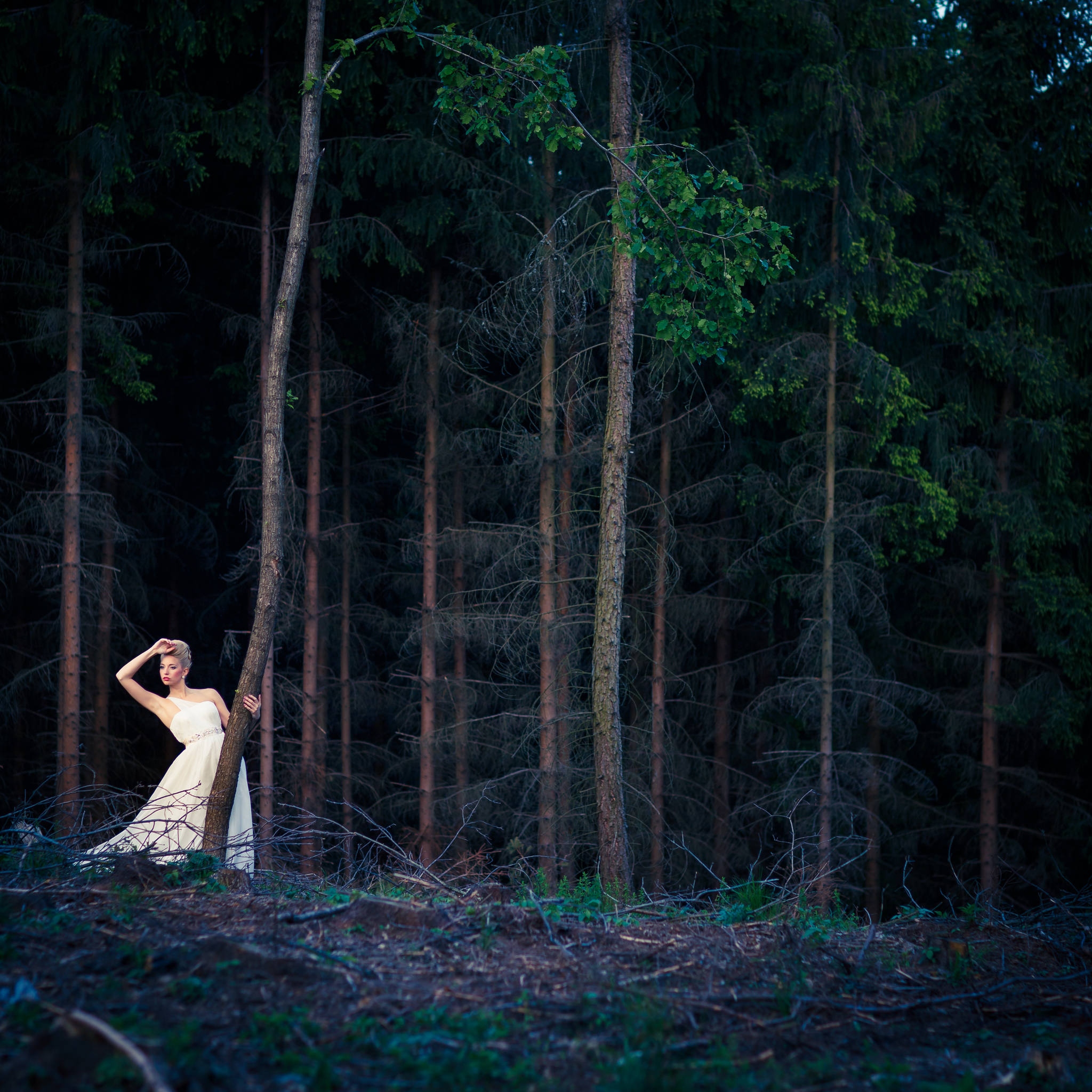 Forest Bride