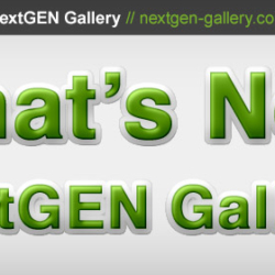nextgen-gallery-new