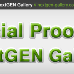 social-proof-nextgen-gallery