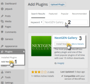 Installing and Updating NextGEN Gallery