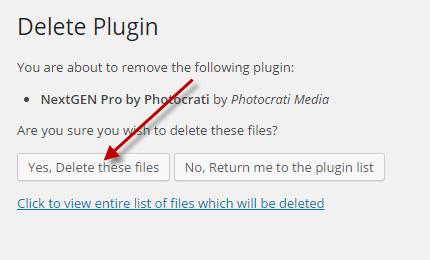 DeleteNGGProPlus1