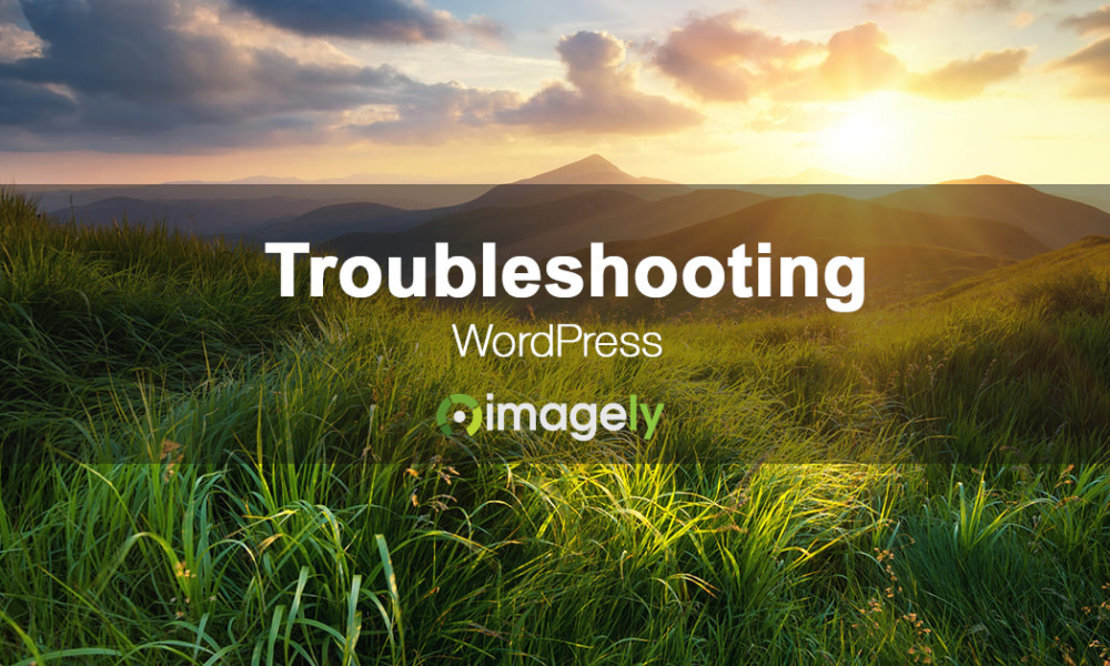 What to do when a WordPress plugin is not working correctly