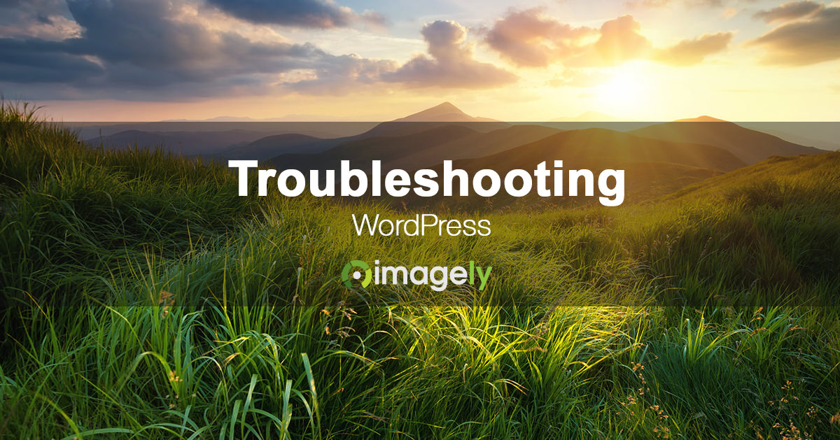 troubleshooting wordpress