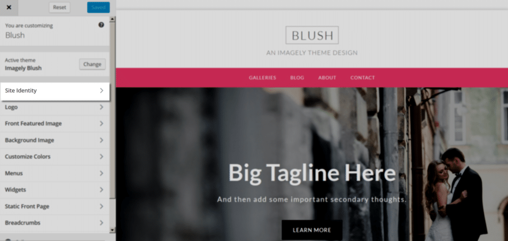 blush_Customize_SiteIdentity