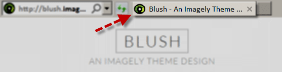 blush_Customize_SiteIdentity_icondisplay