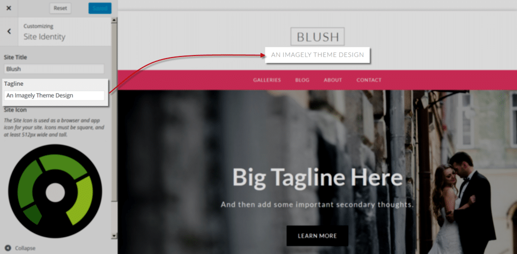 blush_Customize_SiteIdentity_tagline