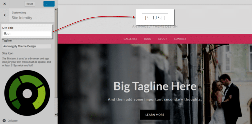 blush_Customize_SiteIdentity_title