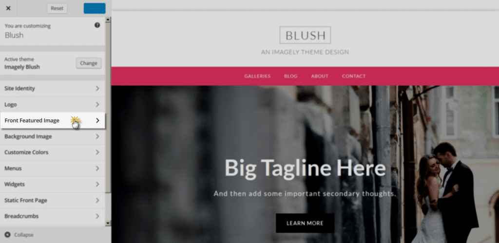 blush_customize_frontfeaturedimage2