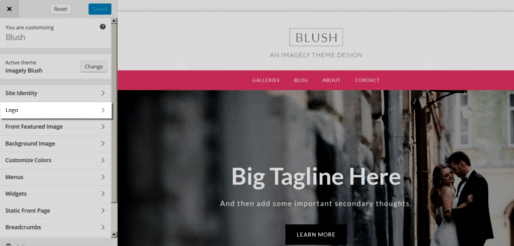 blush_customize_logo
