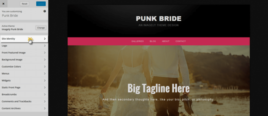 punkbride_siteidentity1