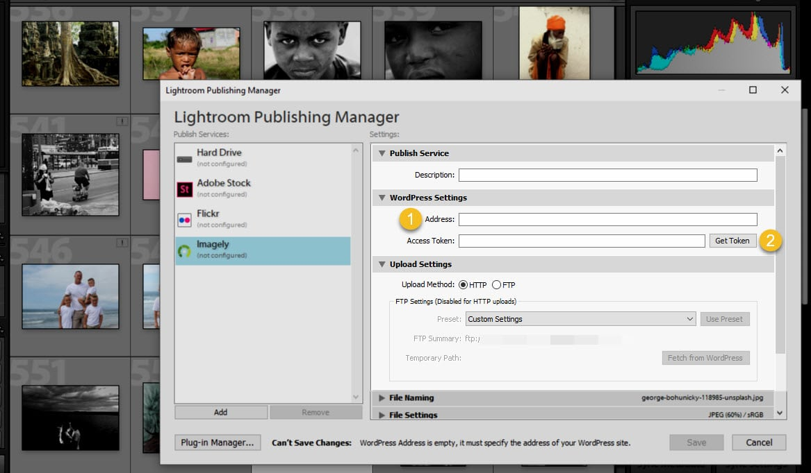 Screenshot of the Lightroom Publishing Manager