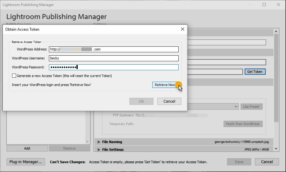 Screenshot Lightroom publishing manager and access token