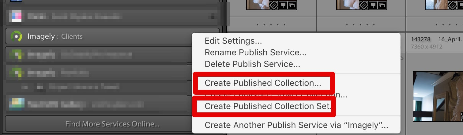 Step 1. To create a gallery or album in NextGEN Gallery through the Imagely Lightroom plugin, right-click on the newly created Publish Service. In the context menu, choose either Collection or Collection Set.