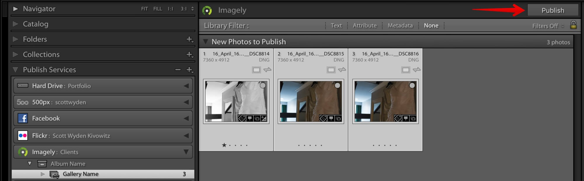 Step 3. Once you drop images inside of your new galleries, click on the Publish button at the top right of the Collection.