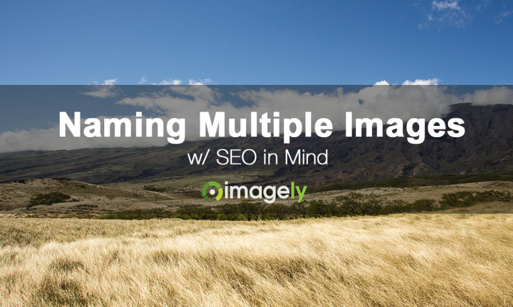 How To Name Files When Including A Lot Of Images In A Post or Page