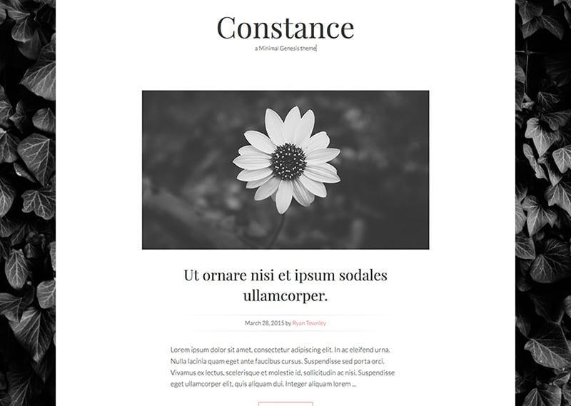 constance-minimal-genesis-theme
