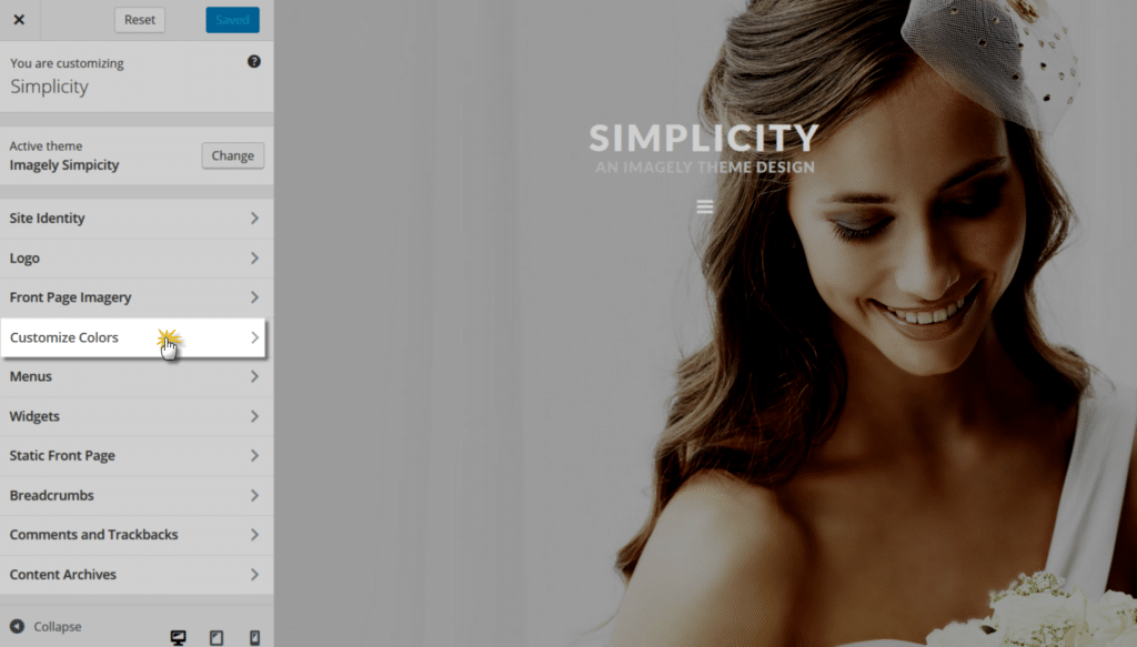 simplicity_customizecolors