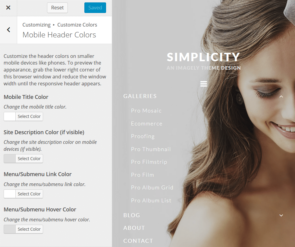 simplicity_customizecolors4