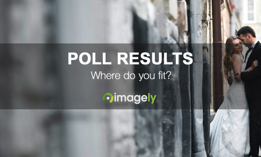 Results from our WordPress Plugins Poll