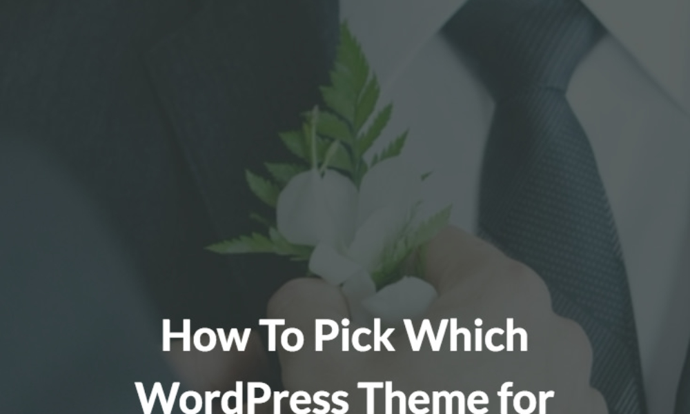 How To Pick Which WordPress Theme for Photography Websites
