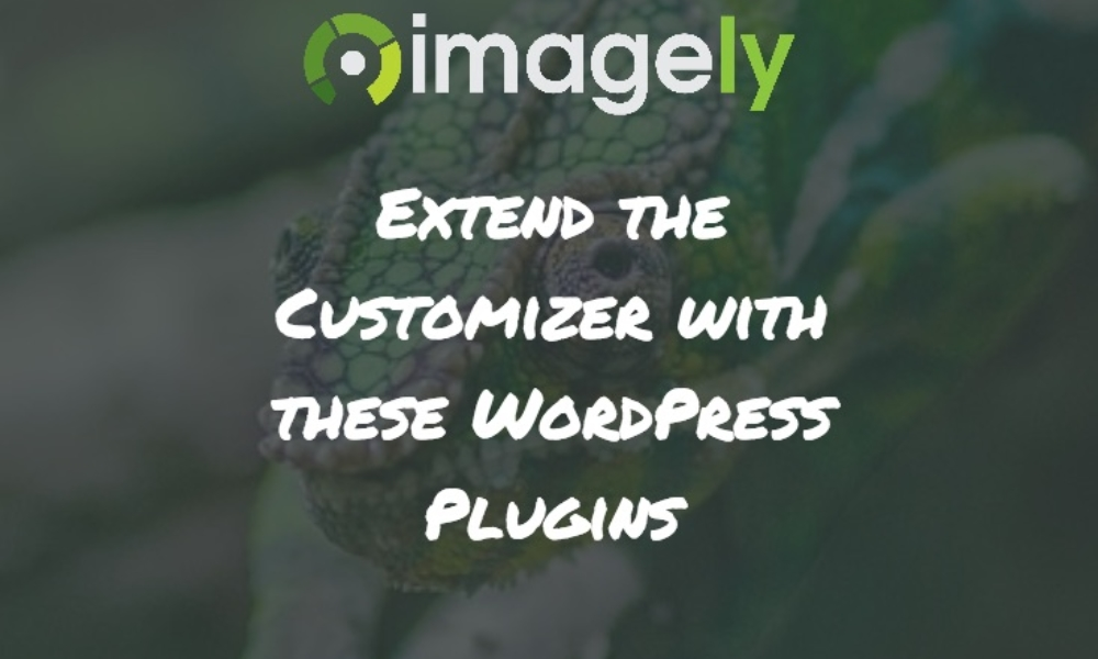 Extend the Customizer with these WordPress Plugins