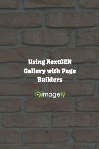 Using NextGEN Gallery with Page Builders