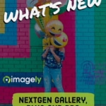 NextGEN Gallery 3.1.0 & 3.1.1 Now Available