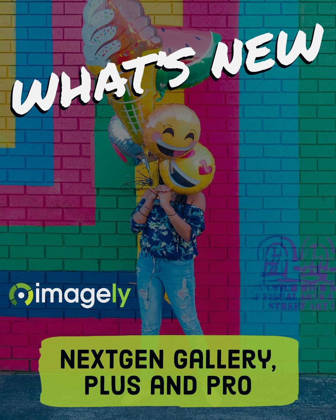 whats new with nextgen gallery plus pro