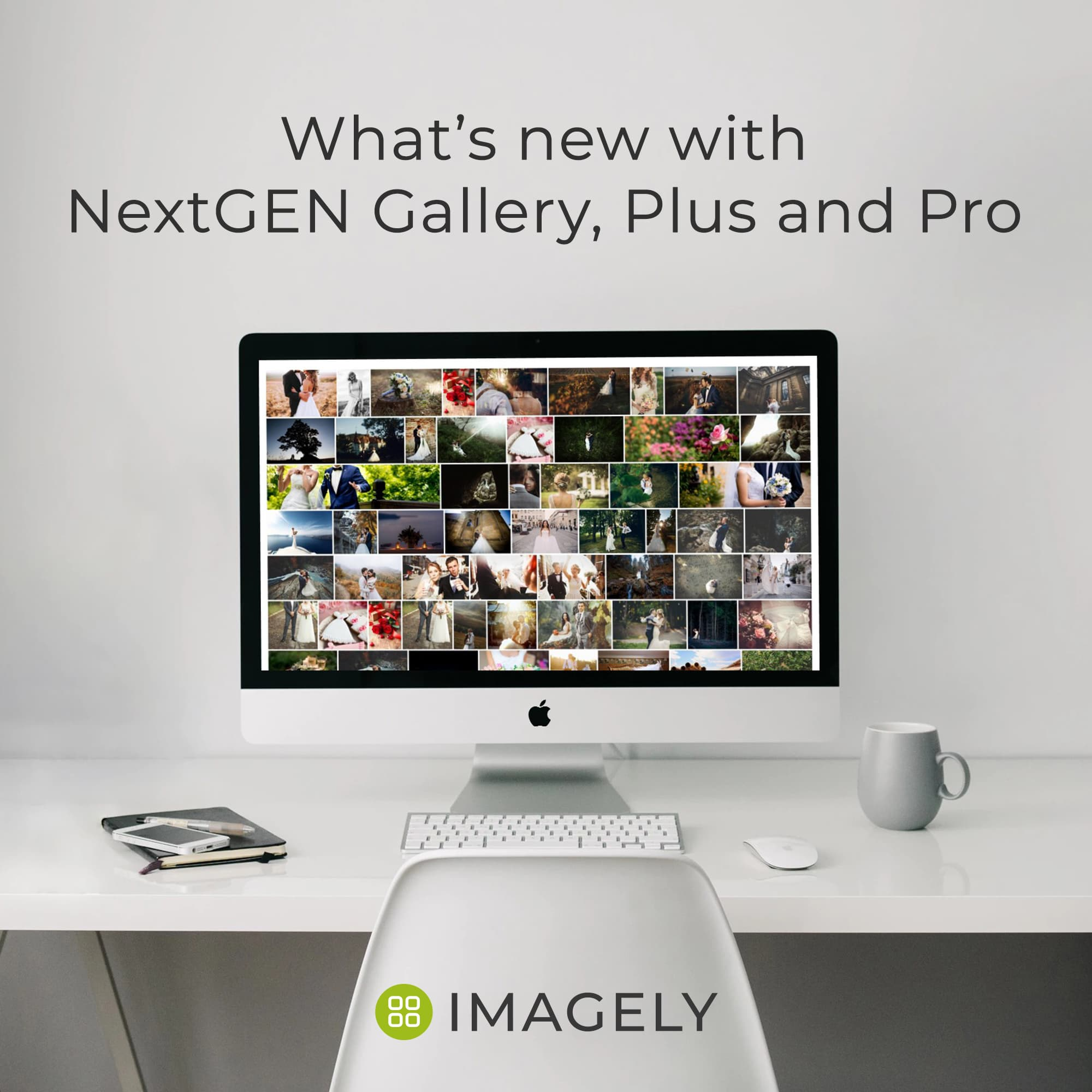 NextGEN Gallery 3.2.4 Now Available