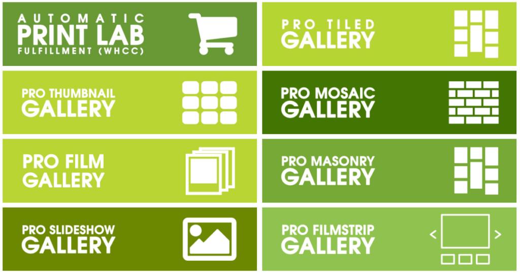 NextGEN Pro is an extension for our flagship plugin, NextGEN Gallery:
