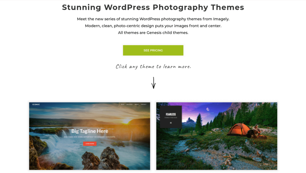 Instead, it's wise to choose from themes that are created specifically for photographers, such as our Imagely WordPress Photography Themes: