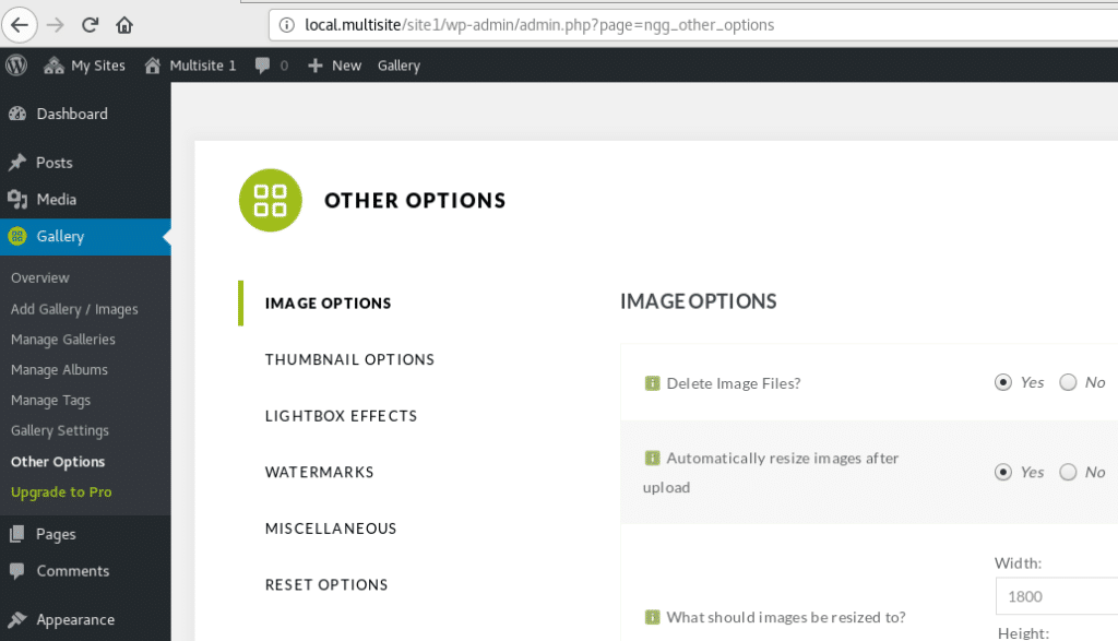 Screenshot of our Site1 NextGen Gallery options