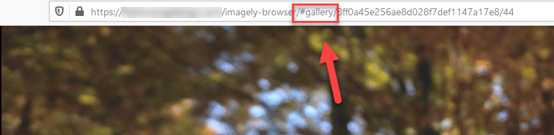 visible lightbox slug in the photo url