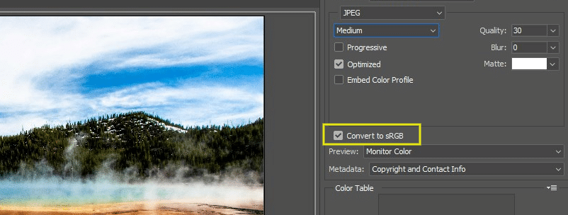 When you're saving your image, make sure the box next to 'Convert to sRGB' is checked. This will ensure you're using the correct color space and, in turn, provide a more pleasant experience for your site visitors.