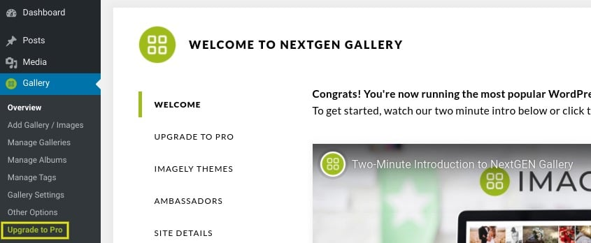 If you're an existing NextGEN Gallery user, you can upgrade to NextGEN Pro by navigating to Gallery in your WordPress dashboard, and then selecting Upgrade to Pro:
