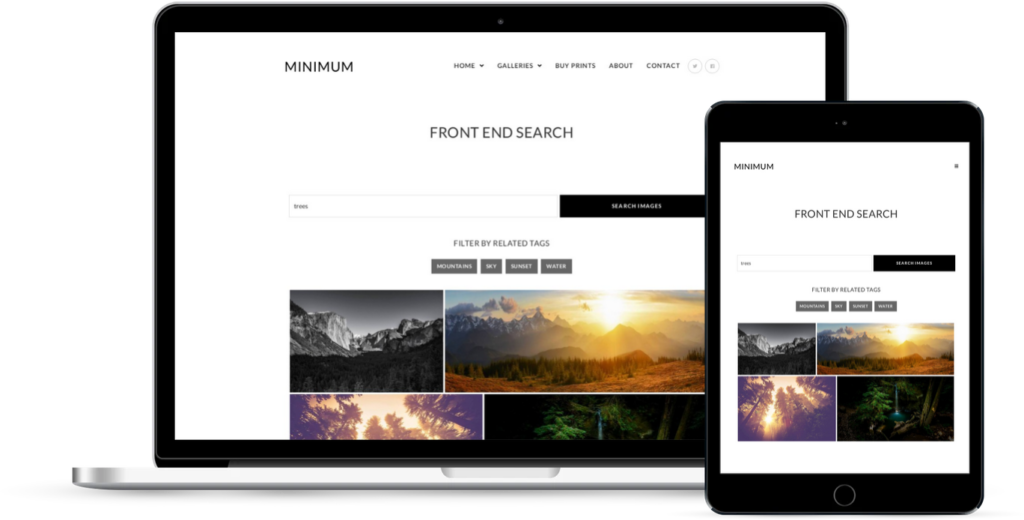 Front End Search Demo