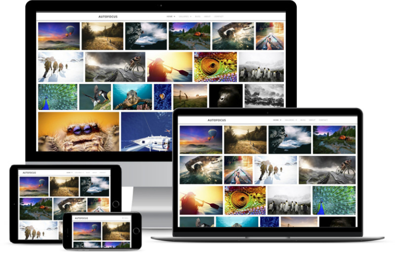 9 Photography Website Templates As Child Themes and Presets