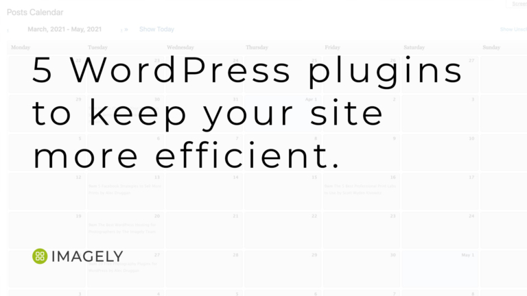 5 WordPress plugins to keep your site more efficient