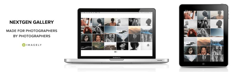 The NextGEN Gallery plugin.