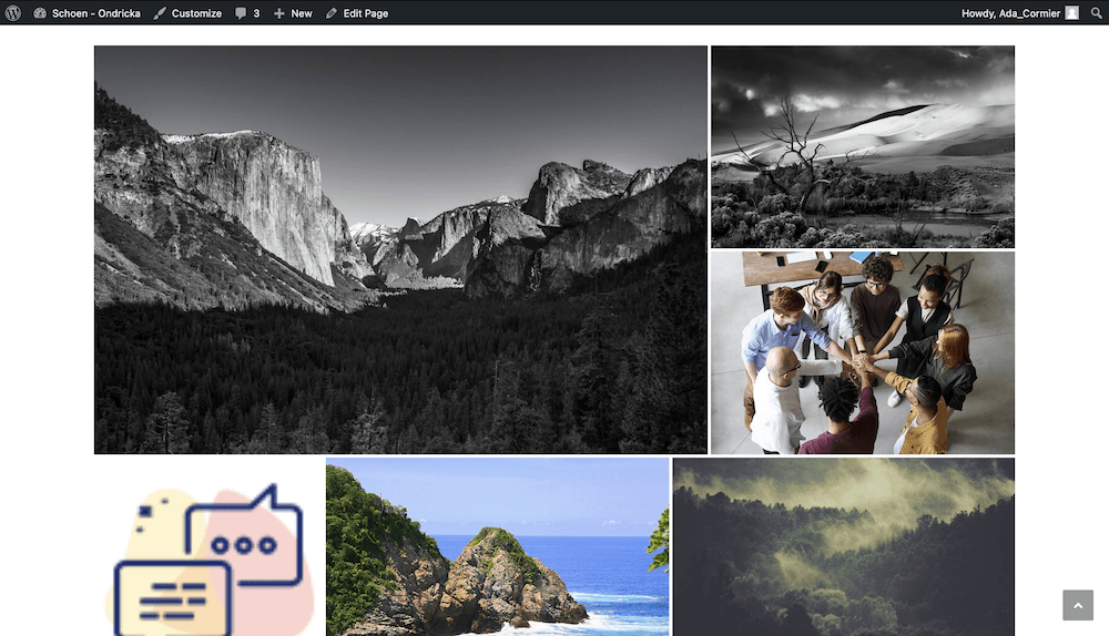 A gallery on the front end of a site.